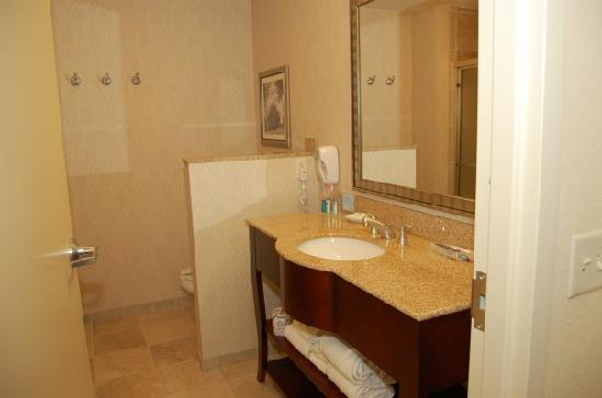 Hampton Inn & Suites Washington-Dulles International Airport: Bathroom.