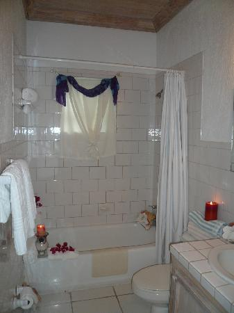 Sugar Apple Bed and Breakfast: Bathroom