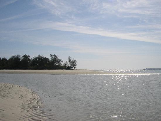 Karimun Jawa, Endonezya: Kura kura resort