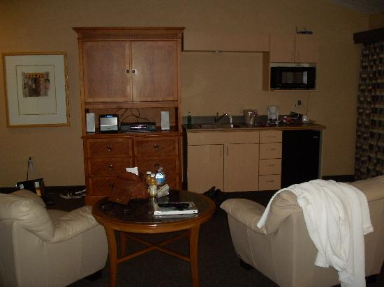 Skaneateles Suites: TV cabinet, stereo and mini kitchen