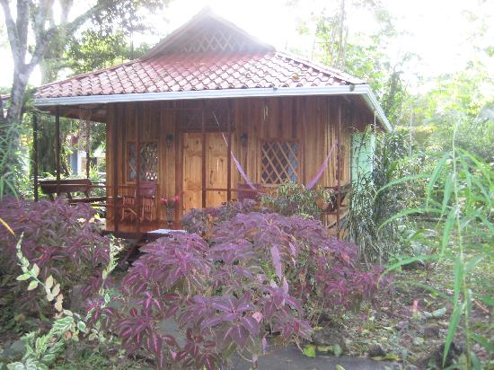 Coral Hill Bungalows: Cabina from outside