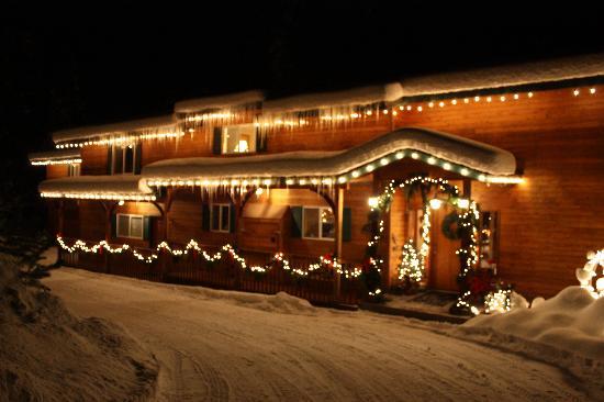 All Seasons River Inn: Lights outside