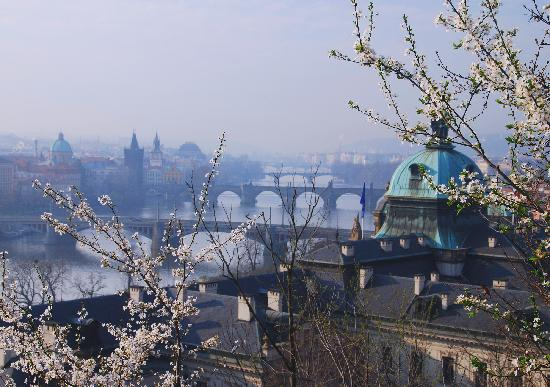 Praga, República Checa: Bridges in March