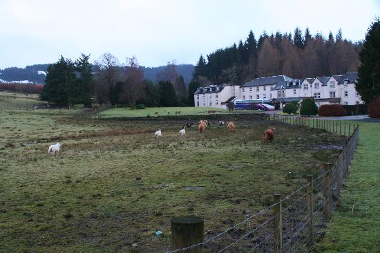Loch Achray Hotel: The hotel