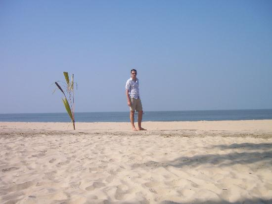 The Beach at Pollethai: beach