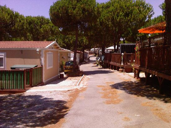 Camping Cabopino: Not a drunk in sight.