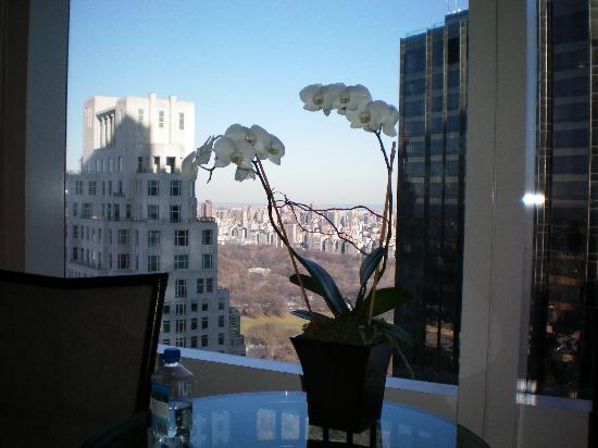 Mandarin Oriental, New York: Beautiful (and real) orchids in the room