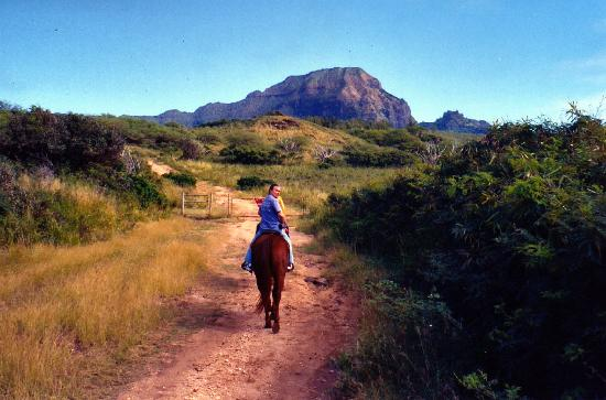 CJM Country Stables: start of trail ride