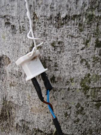 Sirenis Punta Cana Resort Casino u0026 Aquagames Safe wiring practices : wiring practices - yogabreezes.com