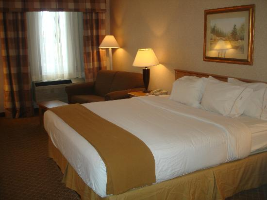 Holiday Inn Express and Suites Beatrice: king room
