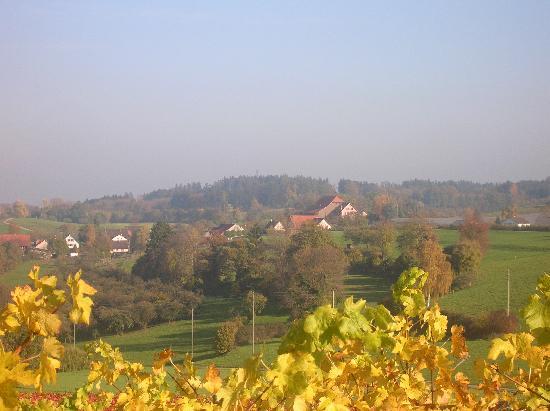 Canton of Thurgau, Suiza: Der Weiler Hüttenswil / Heldswil