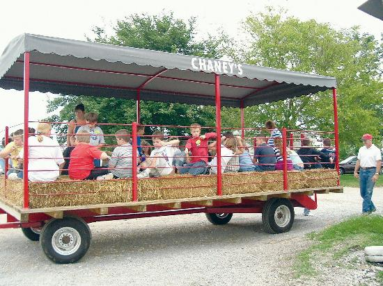 Chaney's Dairy Barn: Wagon ride to the dairy barn