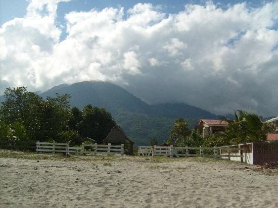 Diving Pelican Inn: A view from the beach, looking towards the mountains.  The inn is located in the right of photo.