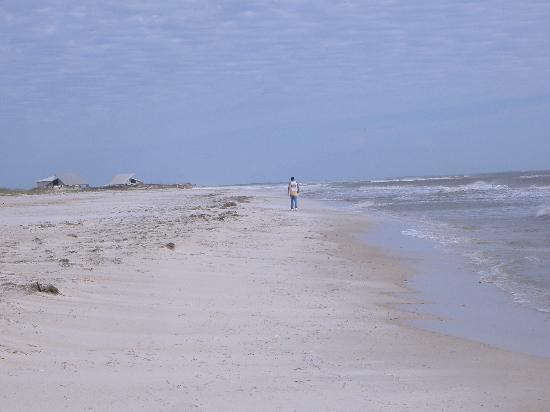 Best Western Apalach Inn: All Alone on the Beach