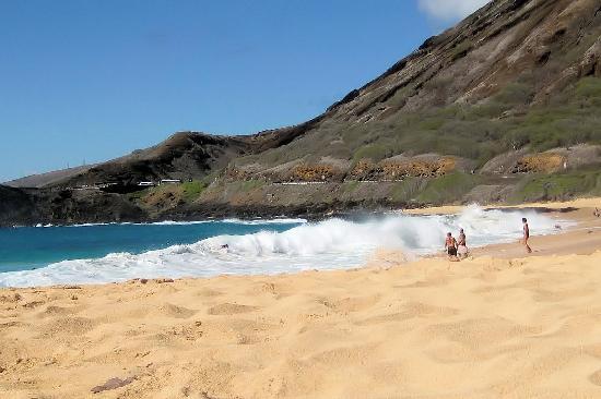 Foto De Waikiki Beach Honolulu Sandy Tripadvisor