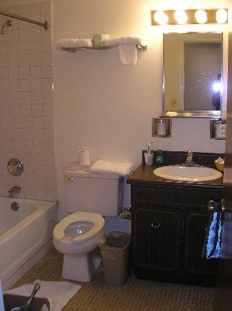 Nyack Motor Lodge: Bathroom