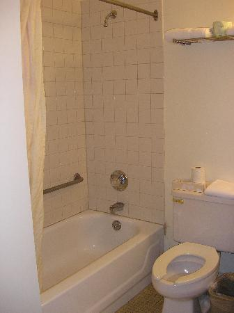 Nyack Motor Lodge: Shower