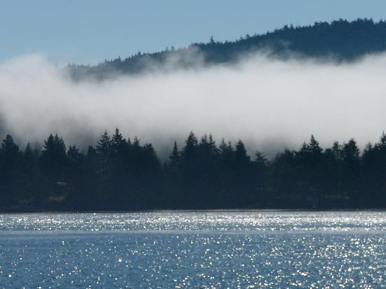 Sooke Harbour House Resort Hotel: Sooke in the summer fog