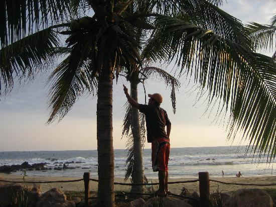 Casa Viva Troncones: Caretaker cutting fresh coconuts