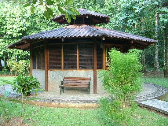 "Casa Corcovado Jungle Lodge: Our 600USD a night ""DELUXE"" bungalow"