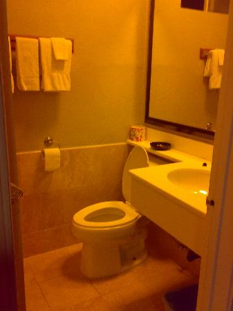 Americas Best Value Inn - Los Angeles / Hollywood: bathroom