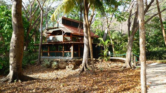 紅棕櫚別墅照片