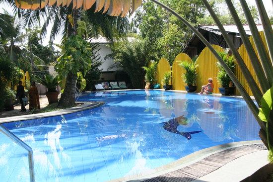 Flower Garden Hotel : la piscine