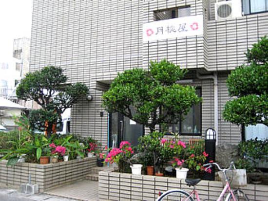 Photo of Shimayado Gettouya Ishigaki