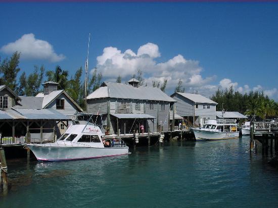 Stuarts Cove Picture Of Nassau New Providence Island