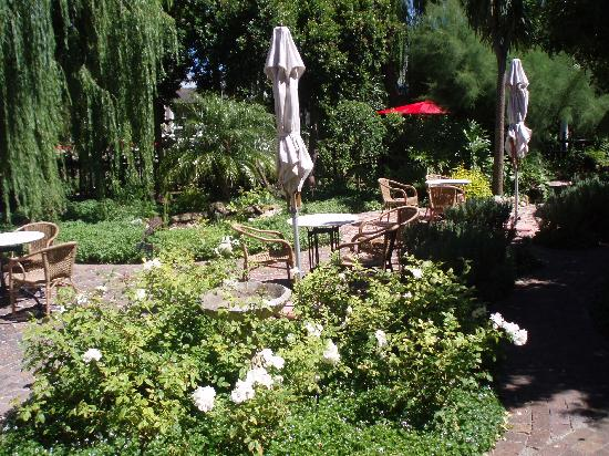 Stellendal Guesthouse: The garden