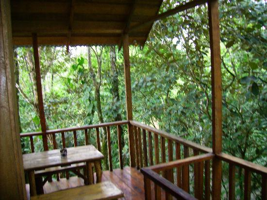Tree Houses Hotel Costa Rica: deck -tree house 1
