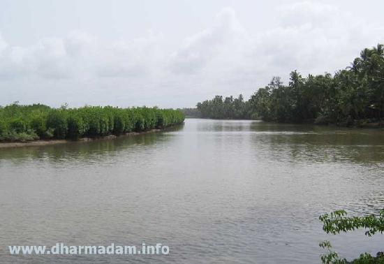 Dharmadam Beach: Dharmadam River