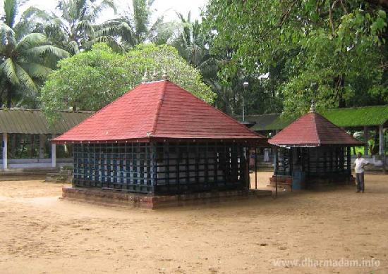 Dharmadam Beach: Andalur Kaavu - One of the famous kaavu in Northern Kerala