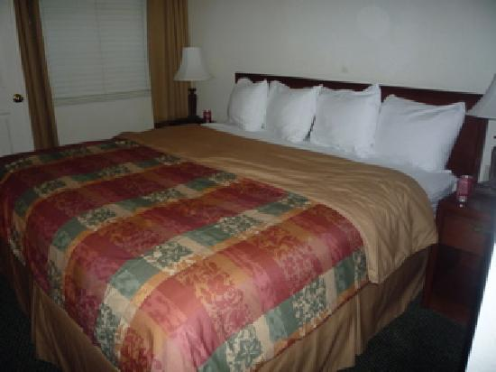 Staybridge Suites Dulles: big bed