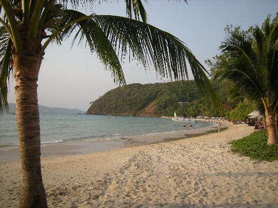 Ao Prao Resort: Ao Prao beach