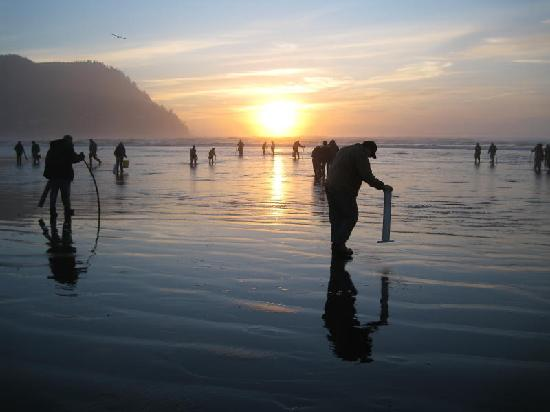 Tides By The Sea : Clam diggers at sunset