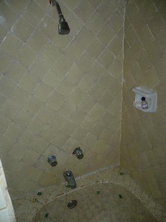 Hacienda Buenaventura Hotel & Mexican Charm All Inclusive: Plumbing in need of repairs - pipes howl & toilet needs 3 flushes.