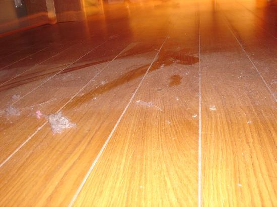 Silica Hotel: Dust on the floor