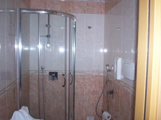 Hotel Brianza: Bathroom
