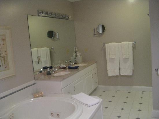 Stone Hill Inn : Spacious bathroom