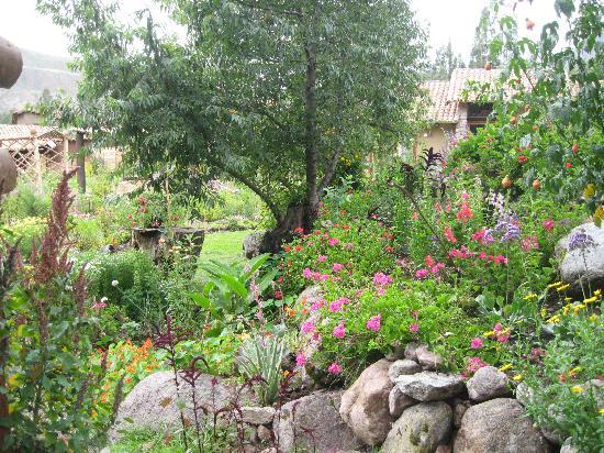 Casa Colibri eco-Lodge: Garden at Casa Colibri