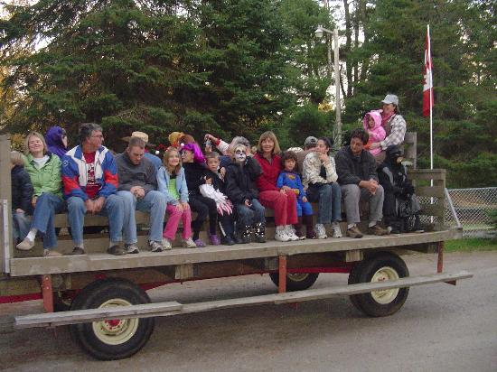 Algonquin Trails Camping Resort: Kids and families on the wagon ride that toured the campground