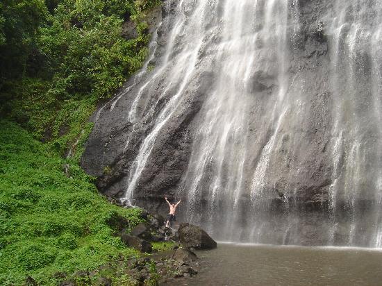 Moorea, Polinesia Francesa: waterfall