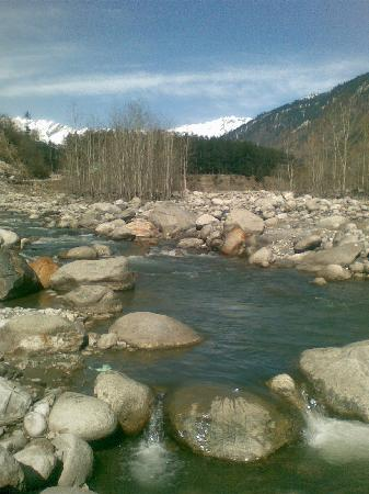 Quality Inn and Suites River Country Resort: Beas river outside hotel