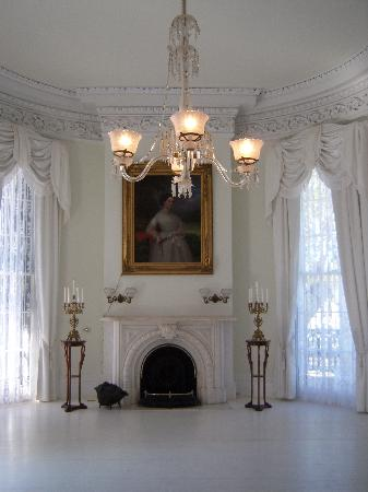 fireplace inside the white ballroom - Picture of Nottoway ...
