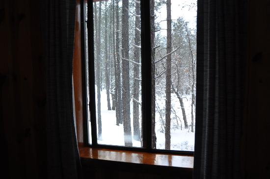 Whispering Pines Resort: View from bedroom window