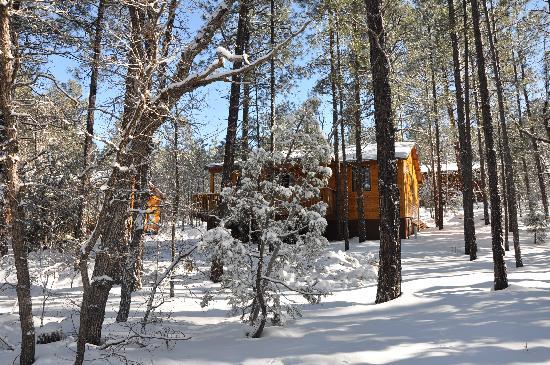 Whispering Pines Resort Photo