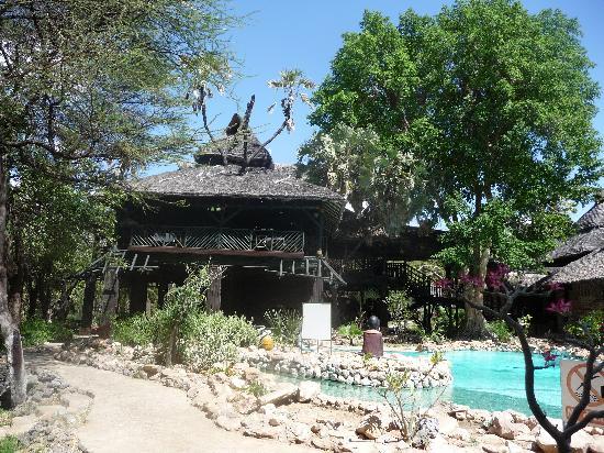 Sarova Shaba Game Lodge : pool and lodge