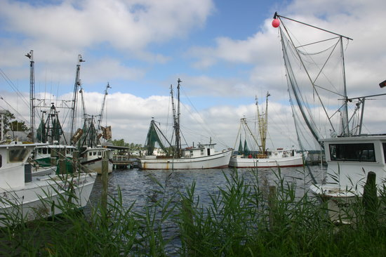 Sneads Ferry, Carolina del Norte: Shrimp boats by Everett & Sons seafood.