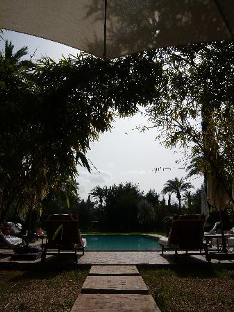 Dar Zemora : Pool